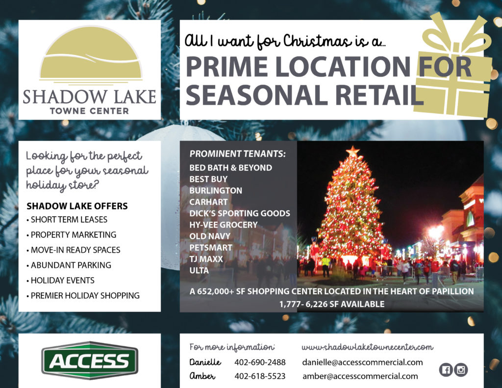 Shadow Lake for Access holiday popup flyer
